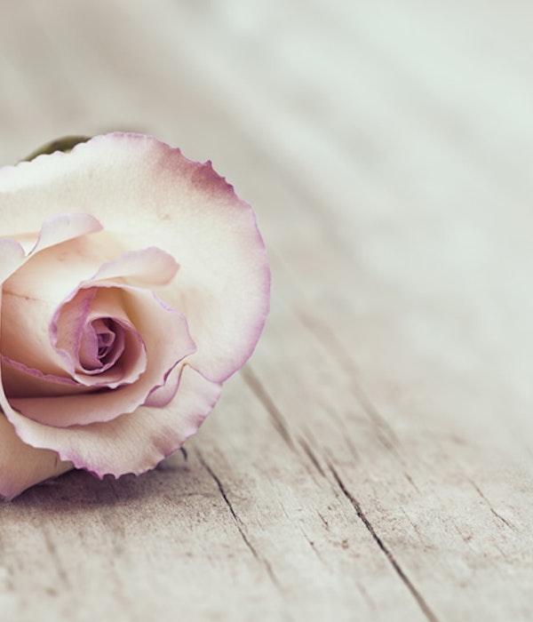 Nya innovationer i begravningsbranschen kan göra sorgearbetet ännu svårare
